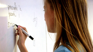 ENGLISH LANGUAGE SCHOOL <br/> LANGUAGE COURSES
