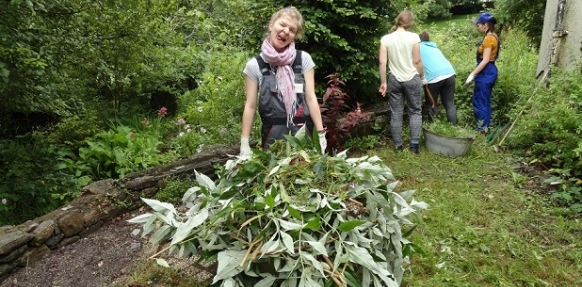 Erasmus plus placement in Plymouth medicinal garden
